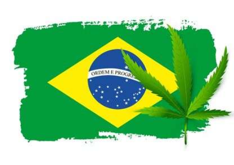 THE PARADOX OF SET AND SETTING IN BRAZILIAN MEDICAL CANNABIS