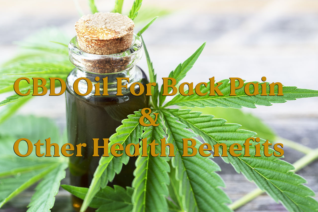 CBD Oil For Back Pain And Other Health Benefits